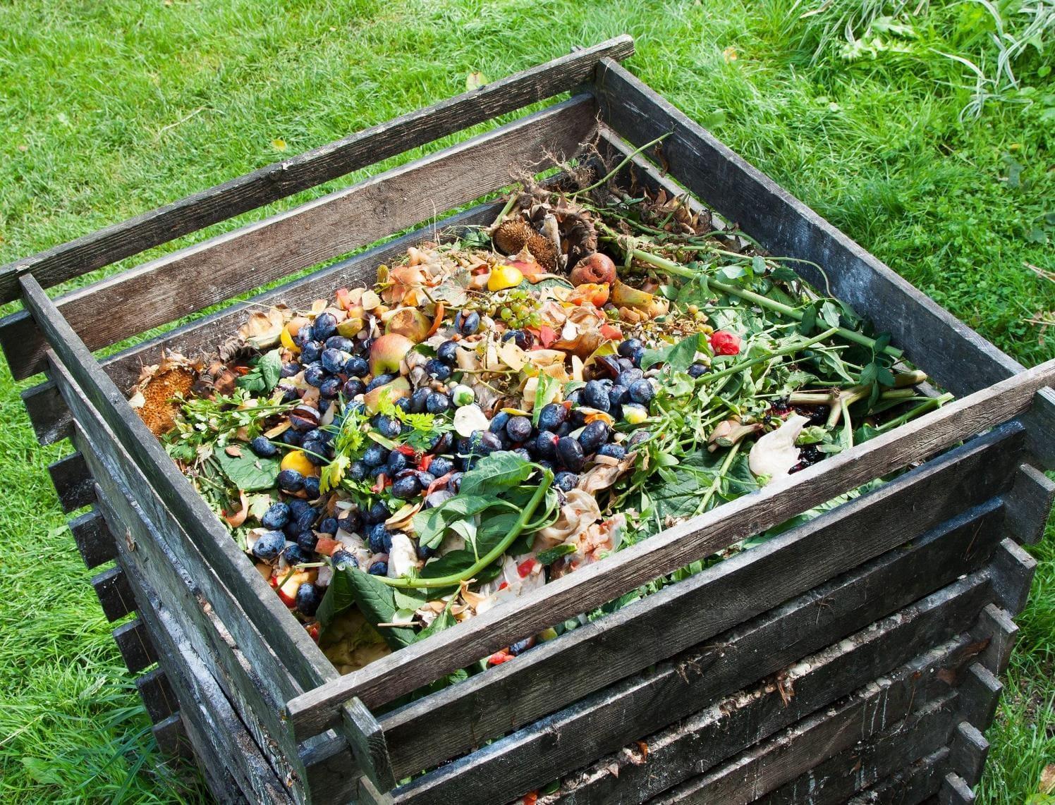 Компост - это перепревшие бытовые органические отходы