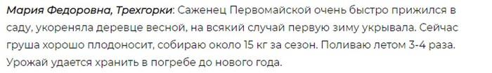 Сорт груши Первомайская - обзор и характеристики