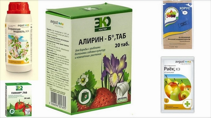 Рекомендуемые концентрации химических препаратов смотрите на упаковках
