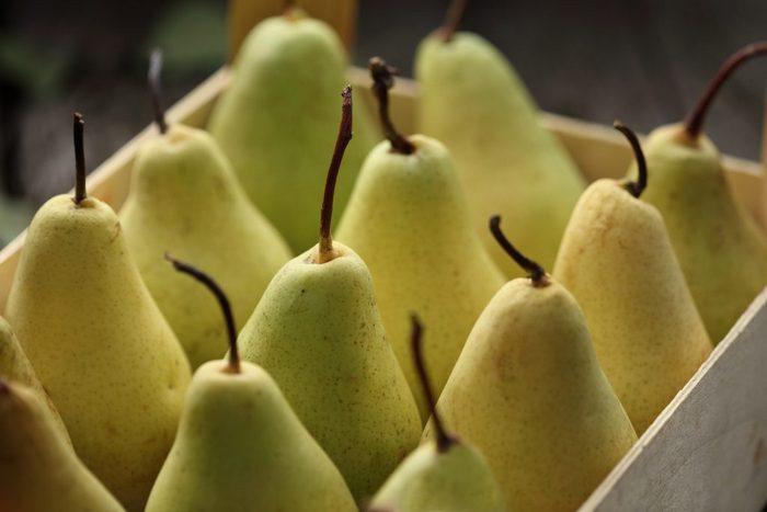 Плоды долго не портятся, поэтому их можно транспортировать и хранить в темном прохладном помещении