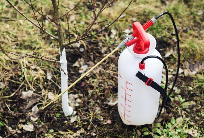 Все профилактические обработки от вредителей проводятся химическими препаратами