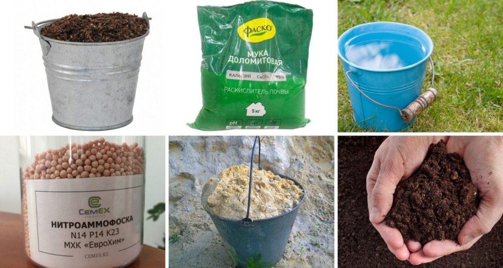 Компоненты, необходимые для посадки саженца груши