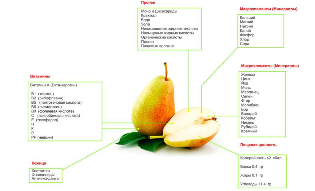 Полезные витамины и минералы, входящие в состав груши