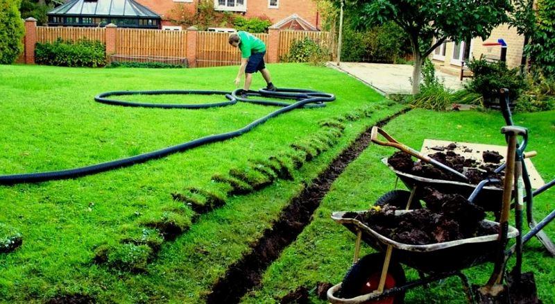 Дренажную систему для отвода подземных вод применяют для урожайности плодово-ягодных культур