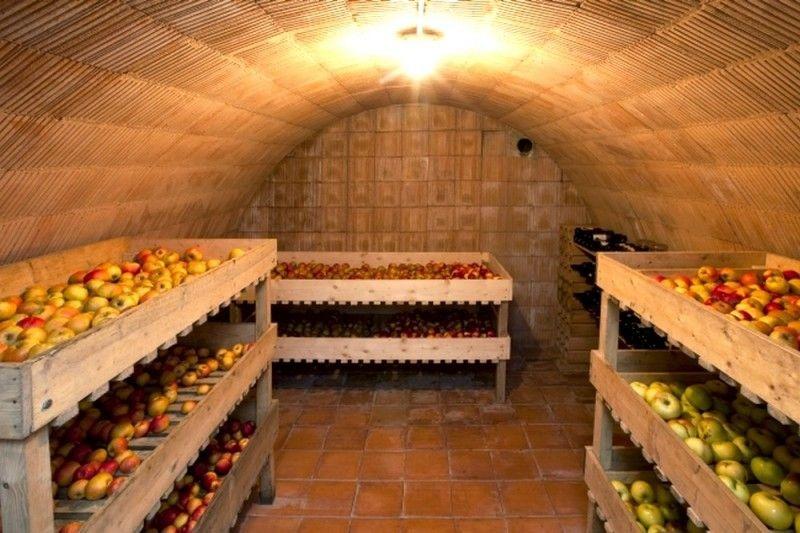 Груши хранят в помещениях, в которых можно обеспечить оптимальную для хранения температуру и влажность воздуха