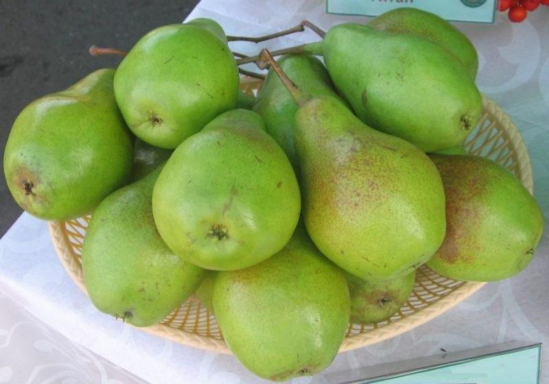 Плоды имеют отменные вкусовые качества и красивый внешний вид