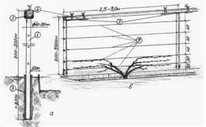 Схема устройства шпалеры для винограда