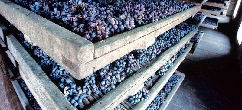 Собранный урожай винограда можно хранить в погребе или подвале, если там соблюдается температурный режим