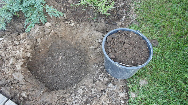 Размер лунки должен быть таким: глубина – не менее 0,9 м, диаметр – 0,8 м