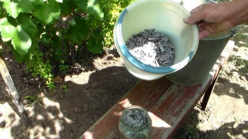 Зола богата калием, а также содержит необходимые винограду фосфор и азот