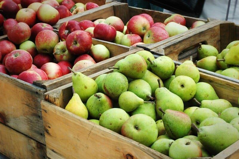 Яблоки хранятся лучше, чем груши, но располагать их рядом не советуют