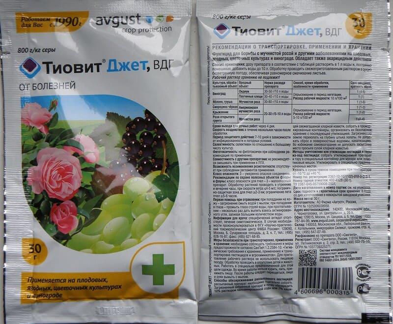 Для профилактики каждый год обрабатывать кусты препаратом Тиовит Джет