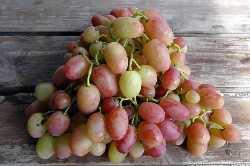В темном прохладном помещении виноград пролежит до 3 месяцев