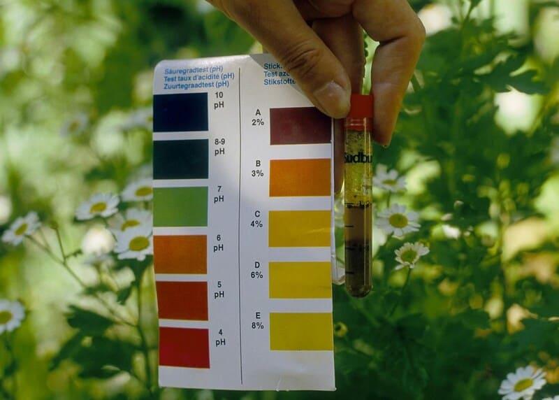 Жёлтый цвет - слабый уровень кислотности почвы