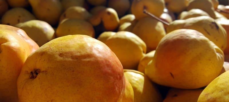 Вкус фруктов – кисловато-сладкий с характерным мускатным послевкусием