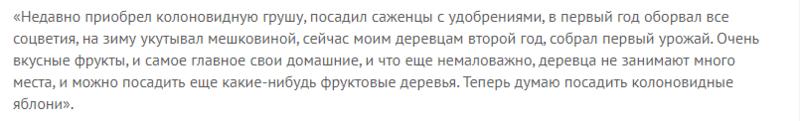 Описание сорта груши колоновидной Павловская