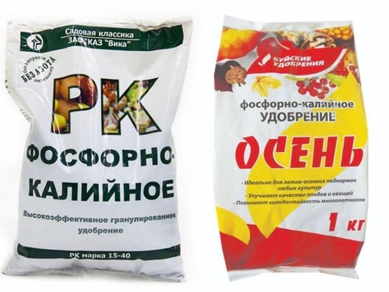Осенью для груши необходимы фосфорно-калийные составы